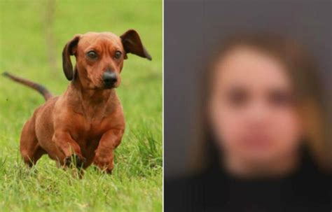 abotonada por su perro news of the worlds mujer follada por su mascota mujer follada por su mascota