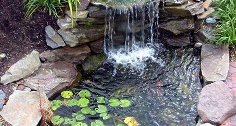 pompe e filtri per laghetti da giardino laghetti da giardino progettazione giardino