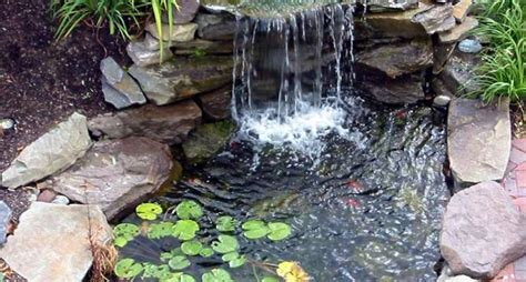 vasche laghetti da giardino laghetti da giardino progettazione giardino
