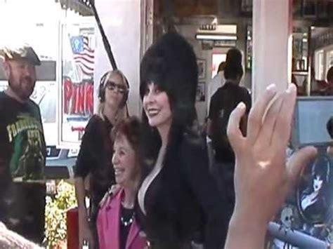 Elvira 2 Pink elvira at pink s dogs