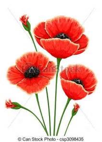 stock illustrationen von mohnblume blumen rotes rotes