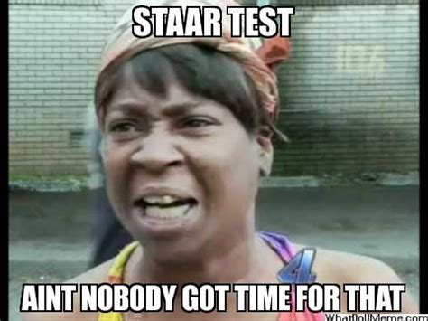 Staar Test Meme - 31 best images about staar funnies on pinterest ryan