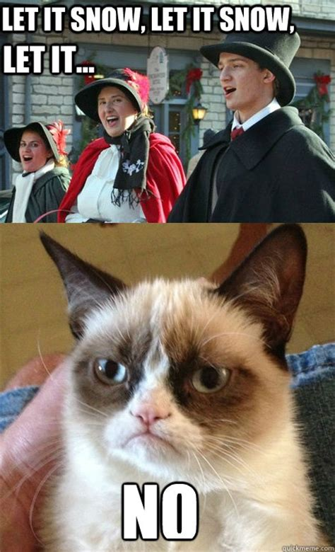 Grumpy Cat Snow Meme - 29 best peanuts characters images on pinterest peanuts