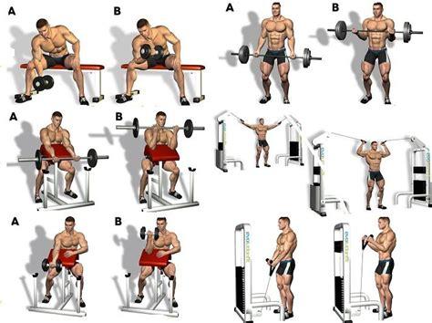 best exercises for big biceps best biceps workout for bicep workout program arm workouts workout