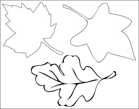 Leaf Print Out Template by Leaf Template Printable Leaf Templates Free Premium