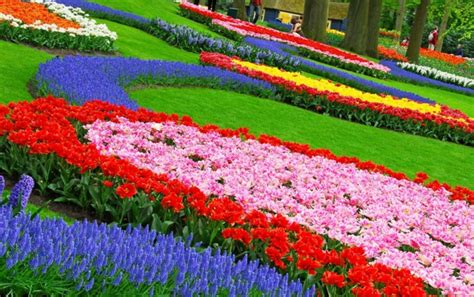blumengarten gestalten 30 gartengestaltung ideen der traumgarten zu hause