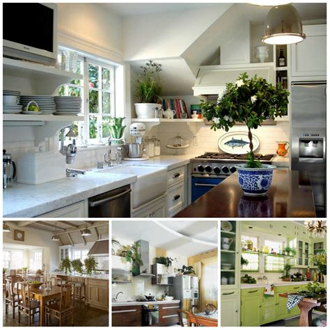 plants in the kitchen potted flowers in the interior of the kitchen what to