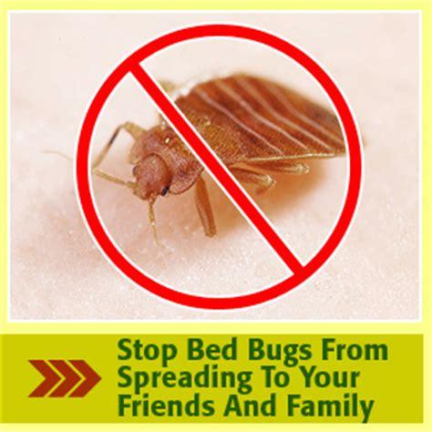 ways to kill bed bugs