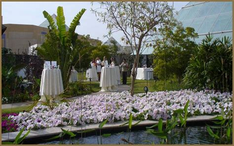 botanical garden events hotel raffles dubai botanical garden events