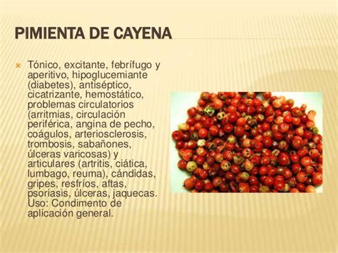 que es pimienta de cayena pimienta cayena related keywords pimienta cayena long