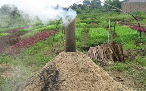 Sekam Kayu Bakar cara mudah membuat arang sekam padi rony agriculture