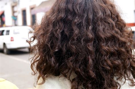 2015 modern curly perm brands for afro textured hair how to take care of permed hair the hair essentials