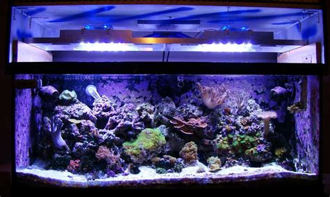 Lu Led Aquarium Air Laut diy led reef tank light