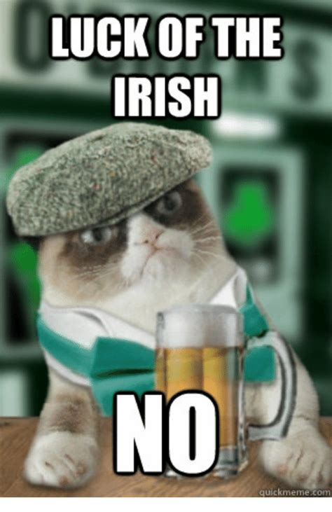 Funny Irish Memes - 20 best irish memes you ll totally find funny