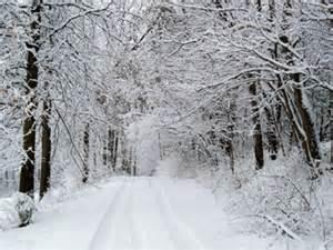 Winter Theme Decorations - missouri winter missouri winter photo credit belinda lin flickr