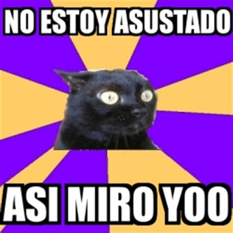 Anxiety Cat Memes - meme anxiety cat no estoy asustado asi miro yoo 1210516