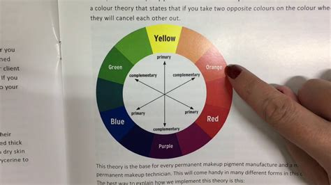 npm colors npm episode 2 color theory with tamara sachs