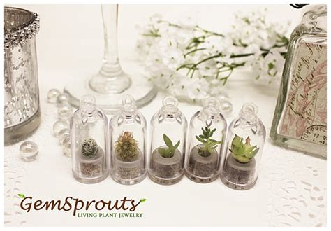 Wedding Favors by Green Living Wedding Favours