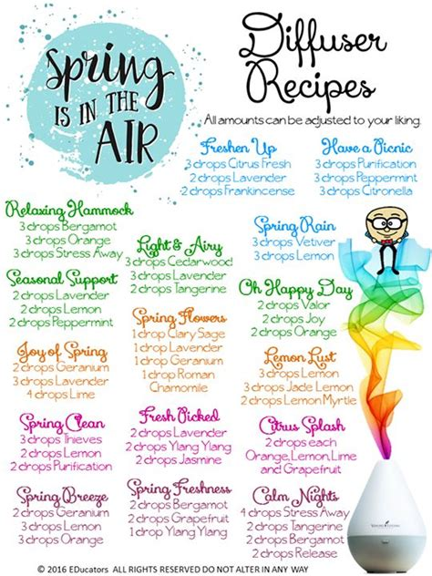 Diffuer Recipes For Detox by 25 Best Ideas About Living Diffuser On