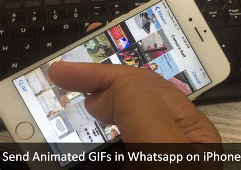 Search For On Whatsapp How To Send Animated Gifs In Whatsapp On Iphone Search Feature