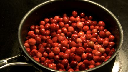 Cranberry Lotion Faith Sudah Bpom thanksgiving sides in honor of the cranberry