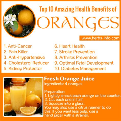 10 Health Benefits Of by Top 10 Amazing Health Benefits Of Oranges