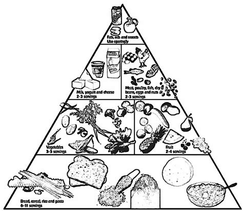 coloring page of the food pyramid food pyramid coloring images