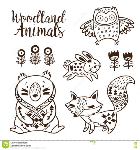 woodland animals an colouring book for dreaming and relaxing books decorative ornamental woodland animals vector set stock