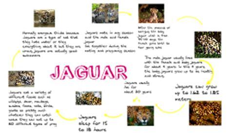 jaguar cycle diagram jaguar cycle by cox on prezi