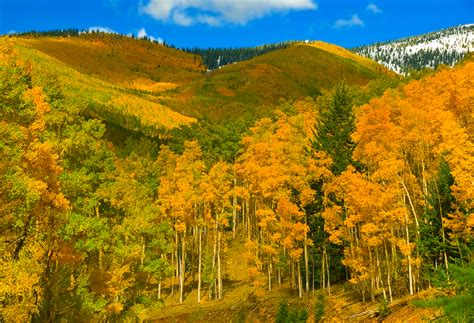 aspen fall colors sante fe ski basin
