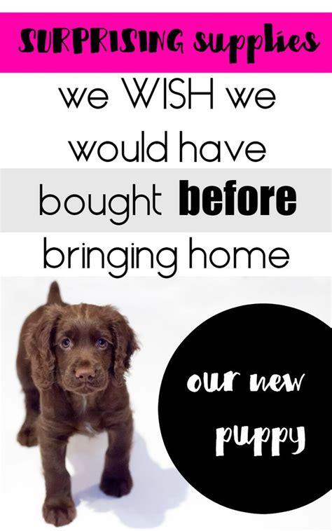 bringing a puppy home checklist 10 best ideas about new puppy checklist on new puppy puppies