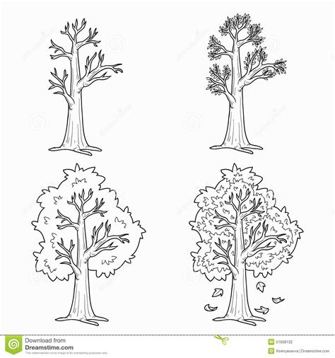 coloring pages trees four seasons coloring book four seasons stock vector image 51658132