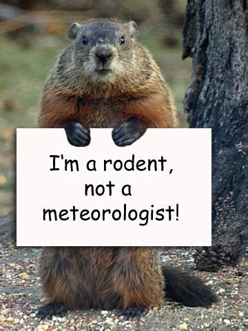 groundhog day is happy groundhog day