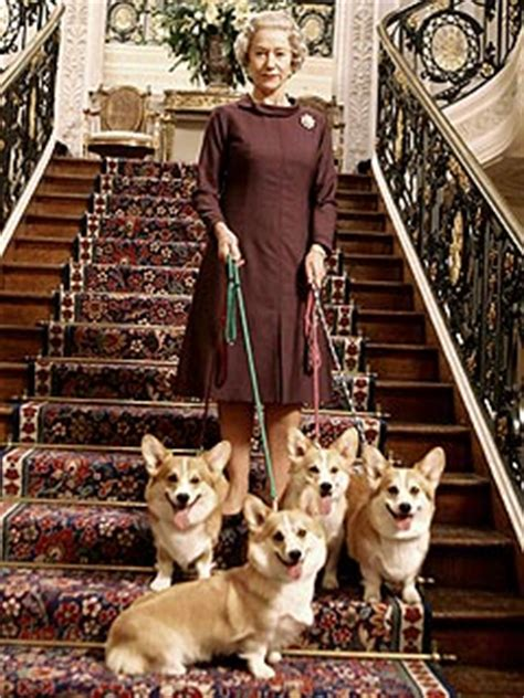 queen elizabeth s dogs helen mirren s costar corgis win top dog award movie