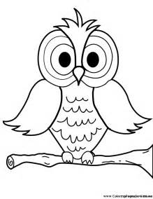 For kids birds color owl color pages owl coloring pages cartoon owls