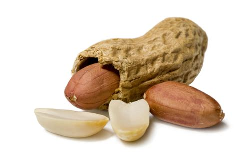 peanuts pictures peanut allergy could be treated with a skin patch in the