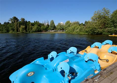 paddle boat rentals foster city deer lake boat rentals burnaby business story