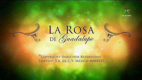 larosa de guadalupe image la rosa de guadalupe jpg scratchpad fandom