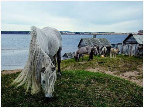 Natgeo World 5 national geographic most beautiful photos