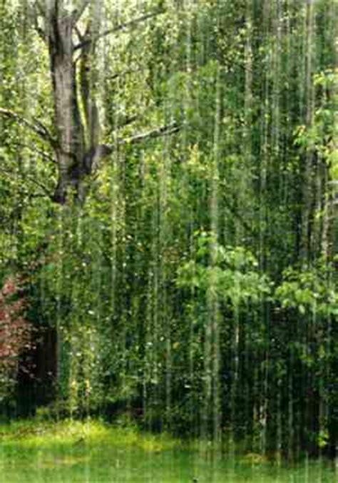 d annunzio la pioggia nel pineto testo gabriele d annunzio poesia la pioggia nel pineto 4