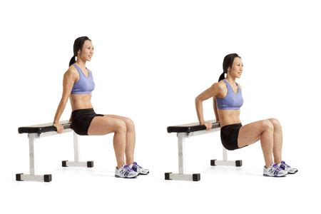 Assisted Bench Press Machine Here Are The 7 Most Important Exercises For Women Amp Men