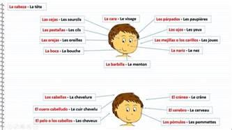 cours d espagnol gratuit le humain en espagnol