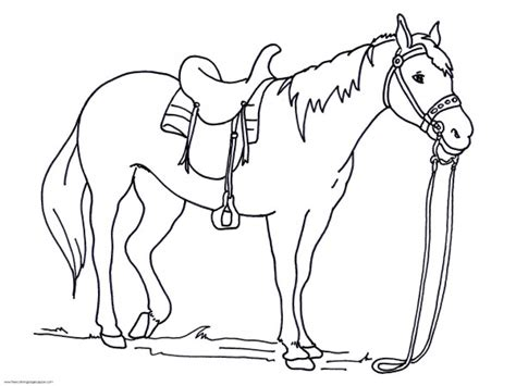 crayola coloring pages horses realistic horse animal coloring pages 187 coloring pages