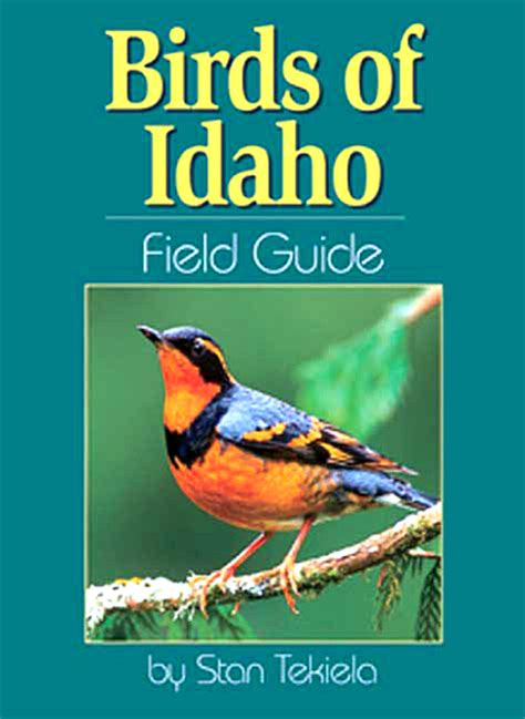 birds of idaho field guide idaho bird identification and