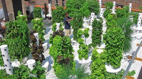vertical aeroponic gardens tower gardens