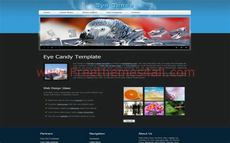 flash website templates free flash css website template jpg freethemes4all