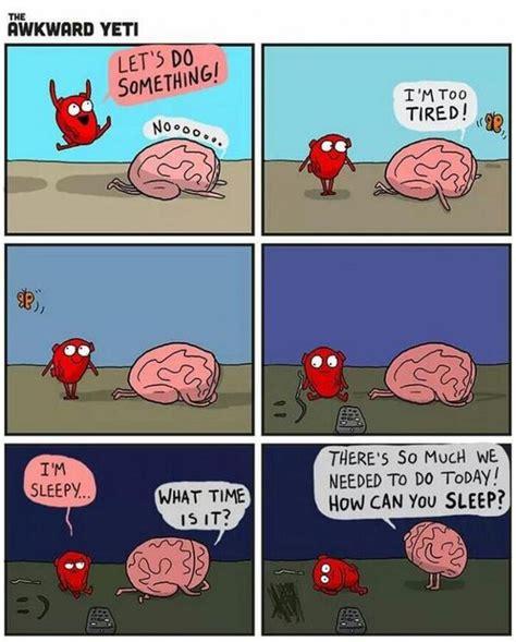 libro heart and brain an heart vs brain humor humor my heart ps and my sister