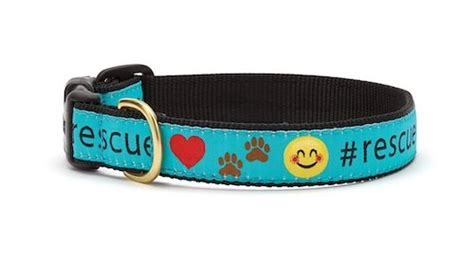 high country puppy rescue up country rescue collar feed pet purveyor