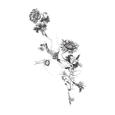 flowers by camille levrier d licate distorsion temporary