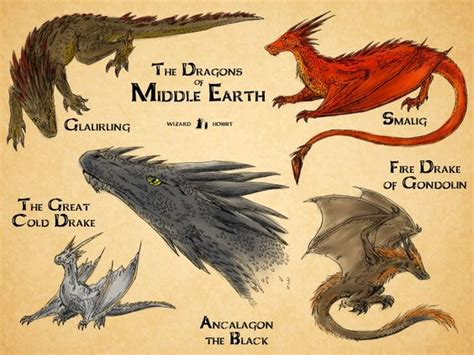 the wearle the erth dragons 1 books dragons of middle earth j r r tolkien